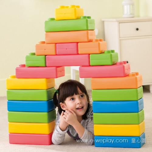 Weplay Brick Me Set ( 45 pcs)