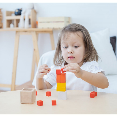 Fraction Cubes - Plan Toys