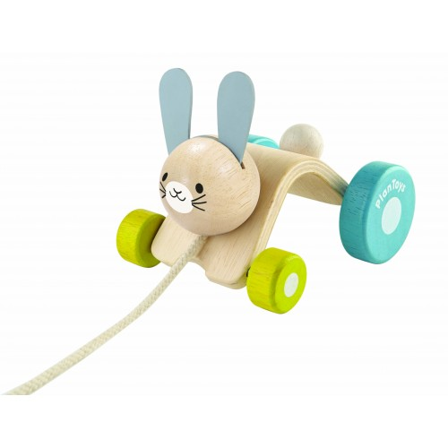 Hopping Rabbit Pull-along Toy