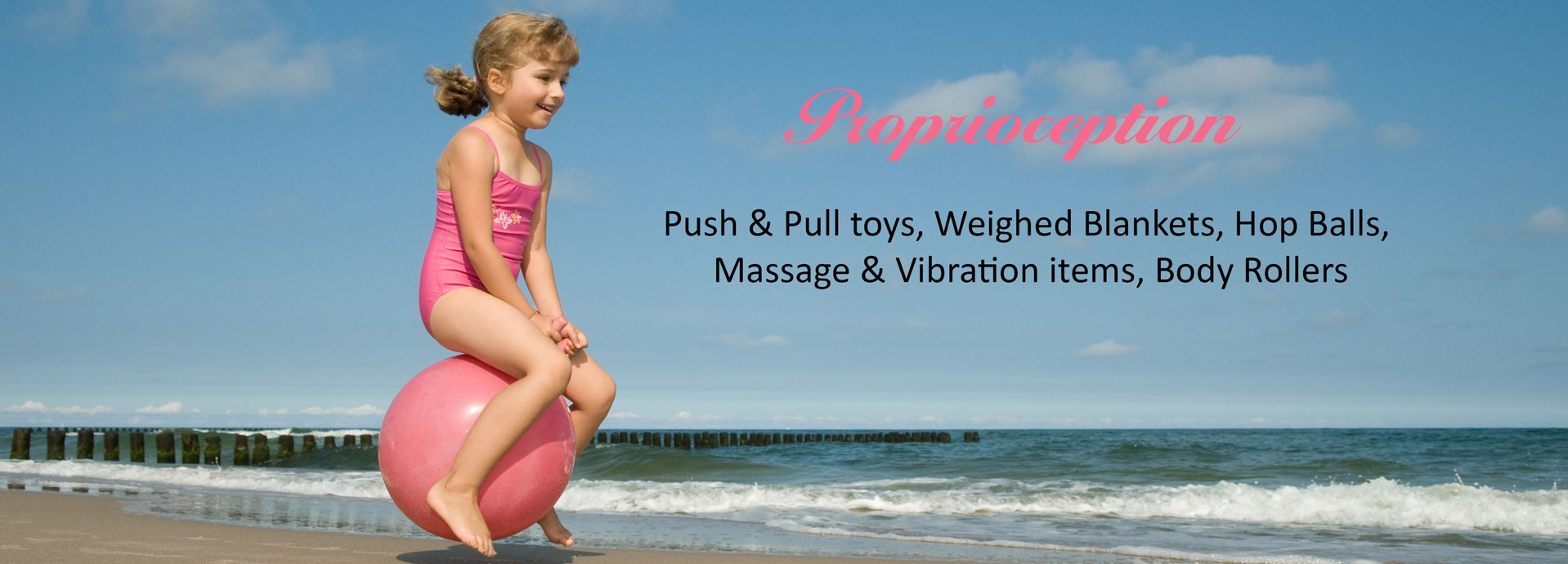 Proprioception: Push & Pull toys, Weighed Blankets, Hop Balls, Massage & Vibration items, Body Rollers