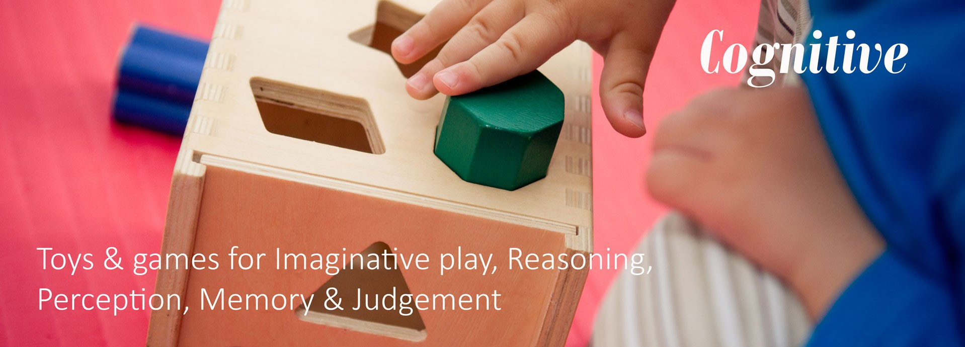 Cognitive: Toys & games for Imaginative play, Reasoning, Perception, Memory & Judgement